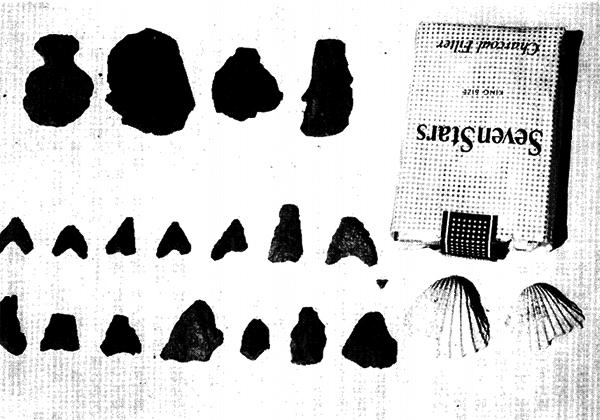 某家所蔵の洗谷貝塚石器-(筆者撮影) 石匙、石飾(穴あき)、石刃、石族