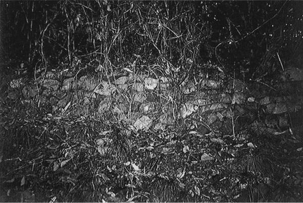 大場山城跡に残る石垣