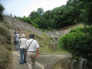 本安寺裏山