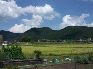 比叡尾山城