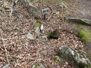 風雲の鷲尾山城と木梨杉原氏盛衰の跡を訪ねて09