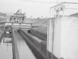 ②久松サイフォンの手前で葦陽用水(真中の水路)が分流している。久松用水は右端の水路
