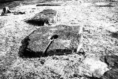 宮の前廃寺跡