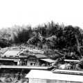 折敷山城跡