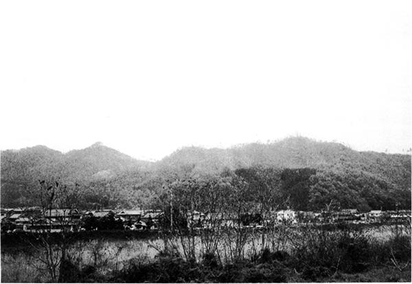 柏城跡遠望(中央やや左が観音寺山)