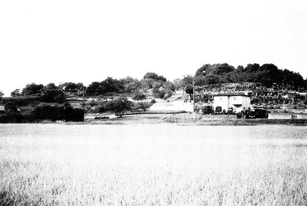 亀山遠景(東より)
