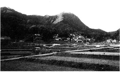 鷲尾山城跡遠望(南より)