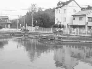 ⑤かつては上水道の水源だった「どんどん池」。