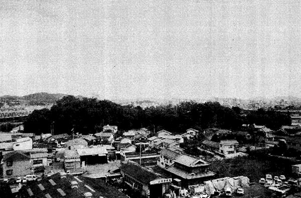 西神島町古城山と正面は西浜