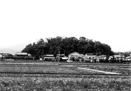 正戸山城跡(南より)