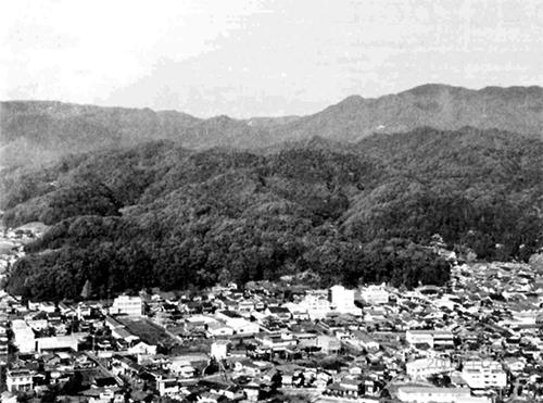 手前横に広がる桜山城跡